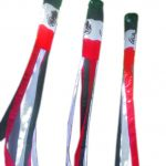 Mexico Flag Windsocks