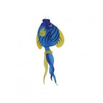Angelfish 3D